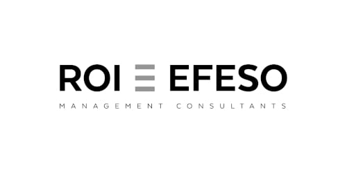 ROI = EFESO Management Consultants (Logo)