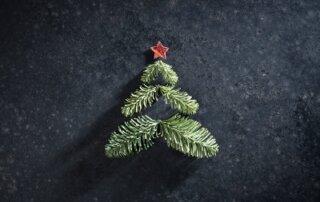 Tannenzweige und ein roter Stern symoblisieren Weihnachtsbaum